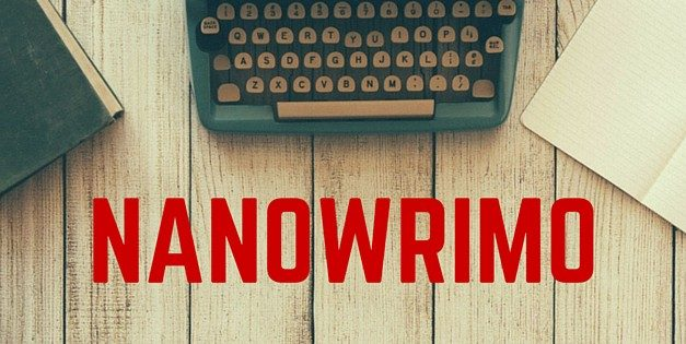 NaNoWriMo and the Young Writers Program